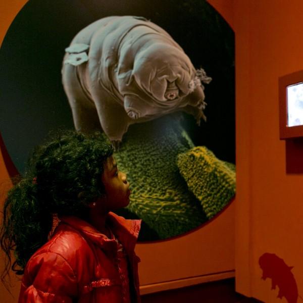 De tentoonstelling Spoorzoeken op Mars op Sonnenborgh
