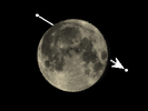 De Maan bedekt xi 1 Ceti