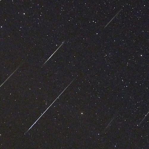 Veel meteoren te zien